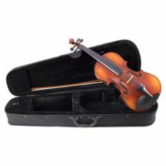 Klaus Mueller Allegro Viola