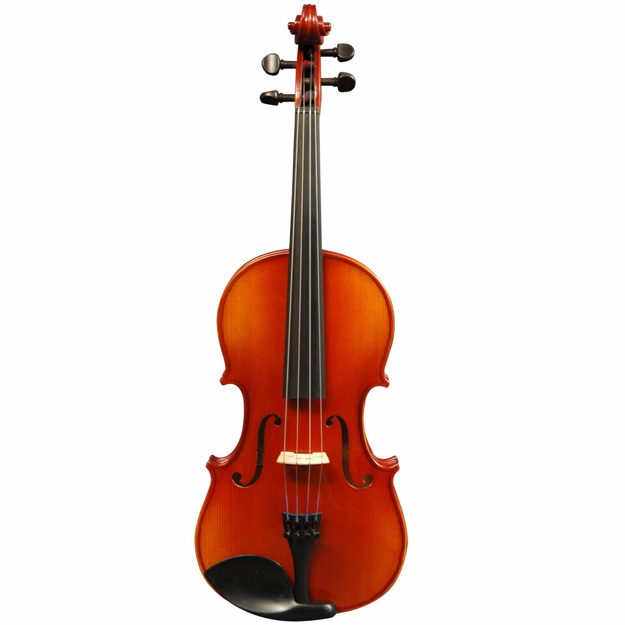 Klaus Mueller Bucharest Viola