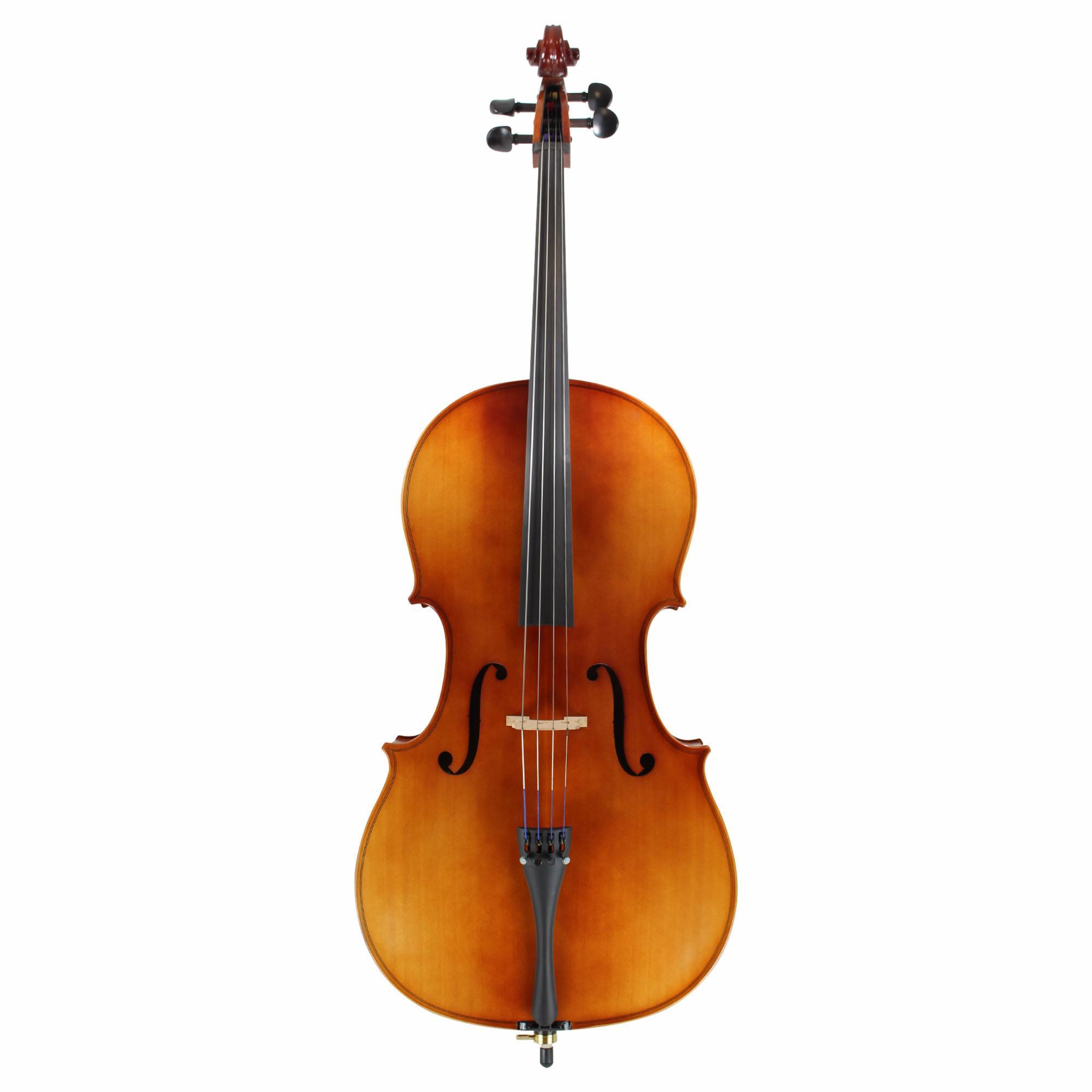 Cello Net Worth