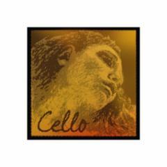 Pirastro Evah Pirazzi Gold Cello Strings