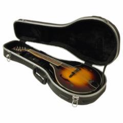 Delta Ridge Thermoplastic Mandolin A Model Folk Case