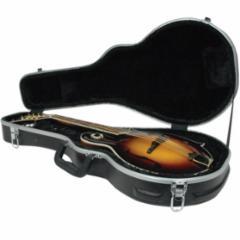 Delta Ridge Thermoplastic Mandolin F Model Folk Case