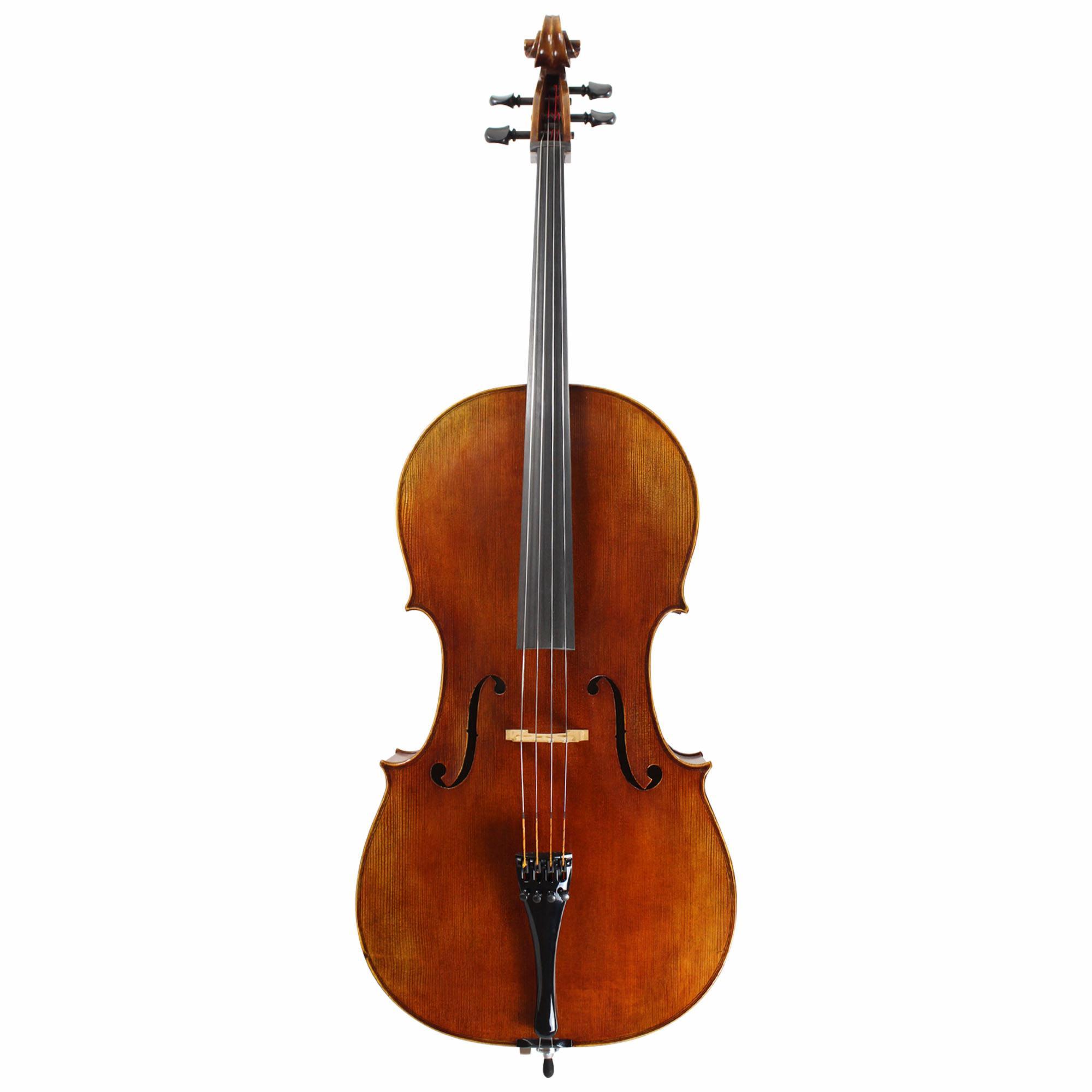 Franz Werner Concert Cello