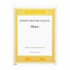 Allegro (G Major) for Violin and Piano